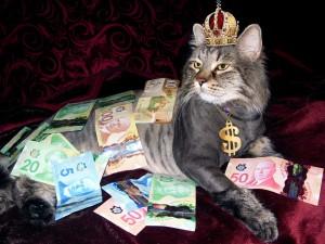 money-1144553_960_720