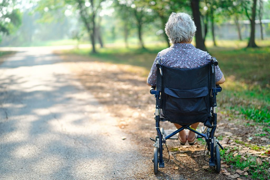 An elderly woman sitting in a wheelchair in a park. Her back is to the camera.